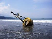 Σημαντήρας θάλασσας, στη φάλαινα Κόστα Ρίκα ακτών παραλιών Στοκ εικόνες με δικαίωμα ελεύθερης χρήσης