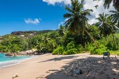 Σημαντική παραλία Anse, νησί Mahe, Σεϋχέλλες, Ινδικός Ωκεανός, ανατολή AF Στοκ Εικόνα