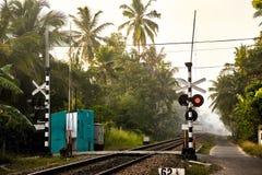 σηματοφόρος Σιδηρόδρομος στους τροπικούς κύκλους του τεντώματος της Σρι Λάνκα στην απόσταση στοκ εικόνες με δικαίωμα ελεύθερης χρήσης