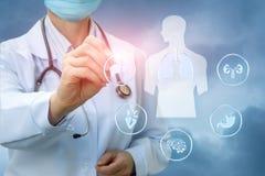 Σημεία γιατρών στα εσωτερικά όργανα Στοκ Εικόνες