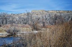 Σημείο ελευθερίας που υψώνεται πέρα από τον ποταμό του Αρκάνσας το μέσο χειμώνα Στοκ Φωτογραφία