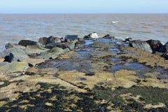 Σημείο της Ness, Lowestoft, Σάφολκ, Αγγλία, UK Στοκ φωτογραφίες με δικαίωμα ελεύθερης χρήσης