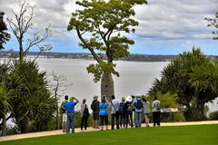 Σημείο τουριστών στο πάρκο βασιλιάδων Στοκ φωτογραφίες με δικαίωμα ελεύθερης χρήσης