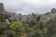 Σημείο φύσης torcal Antequera στην επαρχία της Μάλαγας, Andaluci Στοκ Φωτογραφίες