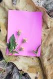 Σημείωση εγγράφου για το ξηρό ξύλο Στοκ εικόνα με δικαίωμα ελεύθερης χρήσης