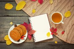 Σημειωματάριο ανοικτό, κούπα με το τσάι και φύλλα φθινοπώρου σε ένα ξύλινο υπόβαθρο Επίπεδος βάλτε στοκ εικόνες με δικαίωμα ελεύθερης χρήσης