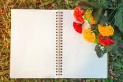 Σημειωματάριο και λουλούδι Στοκ εικόνα με δικαίωμα ελεύθερης χρήσης