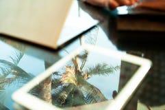Σημειωματάριο και ταμπλέτα κάτω από τους φοίνικες Στοκ εικόνες με δικαίωμα ελεύθερης χρήσης