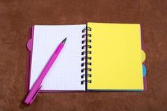 Σημειωματάριο και ballpoint μάνδρα Στοκ Εικόνες