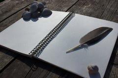 Σημειωματάριο, κοχύλια, φτερό και παλαιό ξύλο Στοκ φωτογραφία με δικαίωμα ελεύθερης χρήσης
