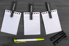Σημειωματάριο, μάνδρα και clothespins Στοκ Φωτογραφία