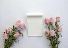 Σημειωματάριο με τα τριαντάφυλλα στο άσπρο υπόβαθρο Το ρομαντικό επίπεδο βάζει το πρότυπο εμβλημάτων με τη θέση κειμένων Στοκ Εικόνες
