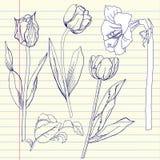 Σημειωματάριο που τίθεται με την τουλίπα και τα amaryllis Στοκ Φωτογραφία