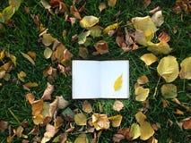 Σημειωματάριο στην πράσινη χλόη στοκ φωτογραφίες