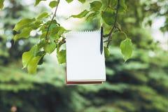 Σημειωματάριο στον πράσινο κλάδο δέντρων Στοκ φωτογραφία με δικαίωμα ελεύθερης χρήσης