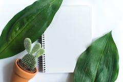 Σημειωματάριο στο άσπρο υπόβαθρο με τα φύλλα των τροπικών φυτών Στοκ Φωτογραφία