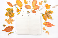 Σημειωματάριο στο πλαίσιο των κίτρινων φύλλων και των λουλουδιών Στοκ Εικόνα