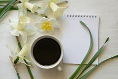 Σημειωματάριο, φλιτζάνι του καφέ και daffodils σε έναν άσπρο πίνακα Εμπνευσμένος εργασιακός χώρος στοκ φωτογραφία
