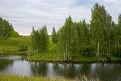 Σημύδα στην όχθη ποταμού στοκ εικόνες