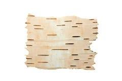 σημύδα φλοιών που καθαρίζ& Στοκ Εικόνα