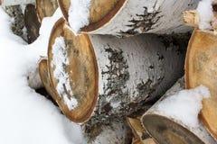 Σημύδα ένα χιόνι σύνδεσης Στοκ φωτογραφία με δικαίωμα ελεύθερης χρήσης
