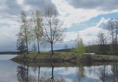 Σημύδα και νερό Στοκ φωτογραφίες με δικαίωμα ελεύθερης χρήσης