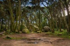 Σιαμέζοι βράχοι βουνών Sintra Στοκ φωτογραφίες με δικαίωμα ελεύθερης χρήσης