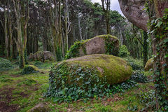 Σιαμέζοι βράχοι βουνών Sintra Στοκ φωτογραφία με δικαίωμα ελεύθερης χρήσης
