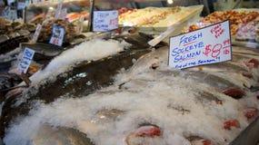 ΣΙΑΤΛ ΟΥΑΣΙΓΚΤΟΝ ΗΠΑ - τον Οκτώβριο του 2014 - φρέσκια επίδειξη θαλασσινών στη δημόσια αγορά θέσεων λούτσων Στοκ Εικόνες