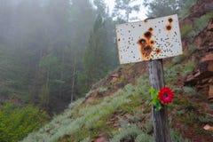 Σιβηρική δασική άποψη Ανατριχιαστικό σημάδι στην ομίχλη Καλοκαίρι Στοκ φωτογραφίες με δικαίωμα ελεύθερης χρήσης
