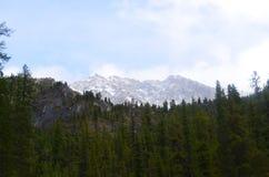 Σιβηρική χιονώδης αιχμή Olympus Στοκ Φωτογραφίες
