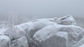 Σιβηρικό κρύο Καλυμμένος τα δέντρα παγετού και χιονιού, που καλύπτονται με με τους βράχους παγετού απόθεμα βίντεο