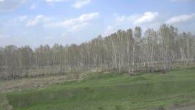 Σιβηρικό τοπίο άνοιξη απόθεμα βίντεο