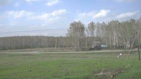 Σιβηρικό τοπίο άνοιξη φιλμ μικρού μήκους