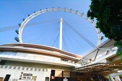 Σιγκαπούρη Flayer η γιγαντιαία ρόδα Ferris Στοκ Εικόνες