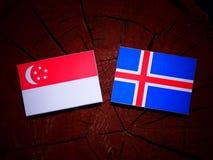 Σιγκαπούριος σημαία με την ισλανδική σημαία σε ένα κολόβωμα δέντρων που απομονώνεται Στοκ φωτογραφία με δικαίωμα ελεύθερης χρήσης