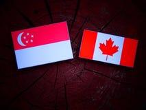 Σιγκαπούριος σημαία με την καναδική σημαία σε ένα κολόβωμα δέντρων που απομονώνεται Στοκ φωτογραφία με δικαίωμα ελεύθερης χρήσης