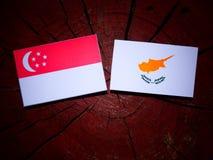 Σιγκαπούριος σημαία με την κυπριακή σημαία σε ένα κολόβωμα δέντρων που απομονώνεται Στοκ Φωτογραφία