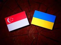 Σιγκαπούριος σημαία με την ουκρανική σημαία σε ένα κολόβωμα δέντρων που απομονώνεται Στοκ Φωτογραφίες