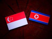 Σιγκαπούριος σημαία με τη βόρεια κορεατική σημαία σε ένα κολόβωμα δέντρων Στοκ Εικόνα