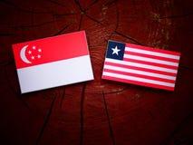 Σιγκαπούριος σημαία με τη λιβεριανή σημαία σε ένα κολόβωμα δέντρων που απομονώνεται Στοκ εικόνες με δικαίωμα ελεύθερης χρήσης