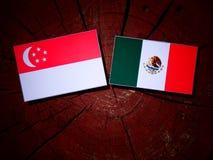 Σιγκαπούριος σημαία με τη μεξικάνικη σημαία σε ένα κολόβωμα δέντρων που απομονώνεται Στοκ Φωτογραφίες