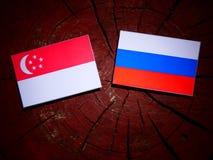 Σιγκαπούριος σημαία με τη ρωσική σημαία σε ένα κολόβωμα δέντρων Στοκ Εικόνα