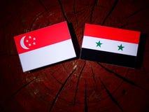 Σιγκαπούριος σημαία με τη συριακή σημαία σε ένα κολόβωμα δέντρων Στοκ φωτογραφία με δικαίωμα ελεύθερης χρήσης