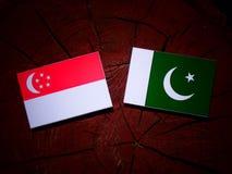 Σιγκαπούριος σημαία με τη σημαία του Πακιστάν σε ένα κολόβωμα δέντρων που απομονώνεται Στοκ εικόνες με δικαίωμα ελεύθερης χρήσης