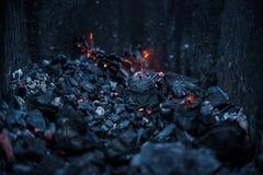 Σιγοκαίγοντας άνθρακες στην πυρά προσκόπων σχαρών στοκ εικόνες