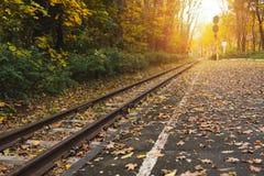 Σιδηροδρομικός σταθμός στο δάσος φθινοπώρου Στοκ Εικόνες