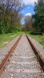 Σιδηρόδρομος μέσω του δάσους Στοκ Φωτογραφία