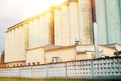 Σιλό δημητριακών κάτω από το μπλε ουρανό Μύλος αλευριού Συγκεκριμένη αποθήκευση του αλευριού και του σιταριού Κίτρινο αρτοποιείων στοκ φωτογραφία με δικαίωμα ελεύθερης χρήσης