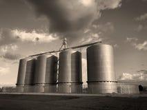 Σιλό σιταριού στο αγρόκτημα στο Gilbert Αριζόνα στοκ εικόνα με δικαίωμα ελεύθερης χρήσης